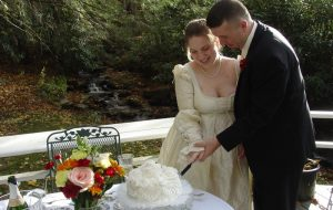 Looking to Elope? These Tips can Help You